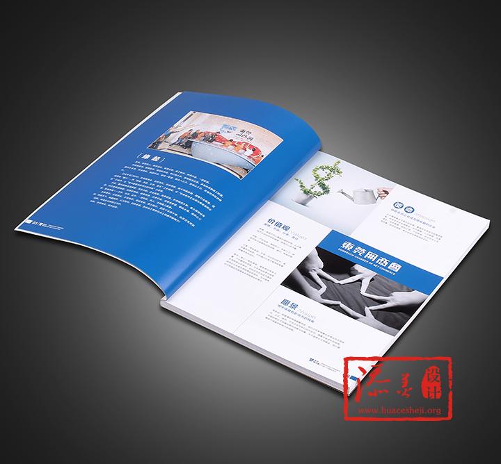 东莞网商会宣传册设计案例欣赏